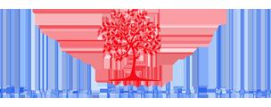 Illawarra Financial Group